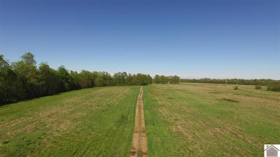 Marshall County Commercial For Sale: 740 Walker Harris
