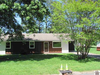 Mayfield Single Family Home For Sale: 503 Windsor