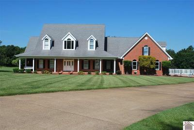 Graves County Single Family Home For Sale: 825 Hayes School Road