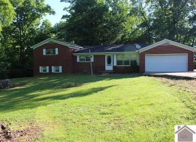 Graves County Single Family Home For Sale: 8428 St Rt 381