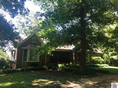 Graves County Single Family Home For Sale: 6657 State Route 440