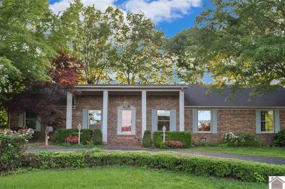 Mayfield Single Family Home For Sale: 201 Erwin Drive