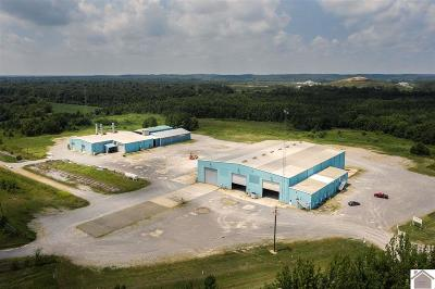 Marshall County Commercial For Sale: 6062 Industrial Parkway