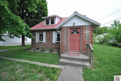 Livingston County Single Family Home For Sale: 114 E. Lion Drive