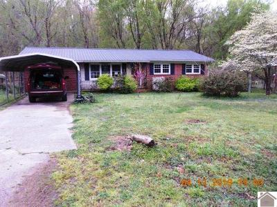 Single Family Home For Sale: 917 Beech Grove Road