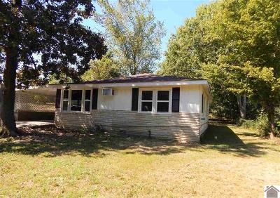 Benton KY Single Family Home For Sale: $39,900