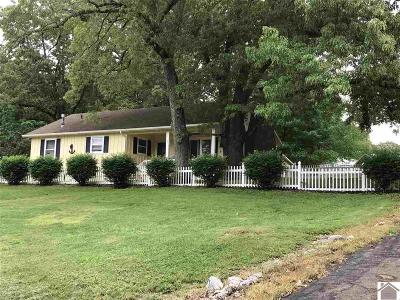 Marshall County Single Family Home For Sale: 222 Cumberland