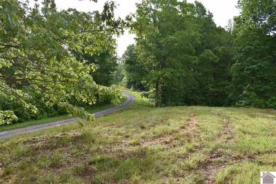 Residential Lots & Land For Sale: Liberty Ln