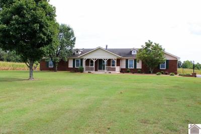 Marshall County Single Family Home For Sale: 6493 Brewers Hwy