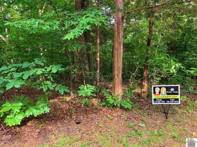 Residential Lots & Land For Sale: Baypoint Ln
