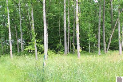 Calloway County Residential Lots & Land For Sale: 246, 301-303 Chancey