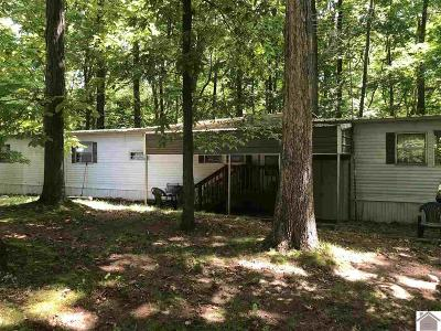 Cadiz KY Manufactured Home For Sale: $52,000