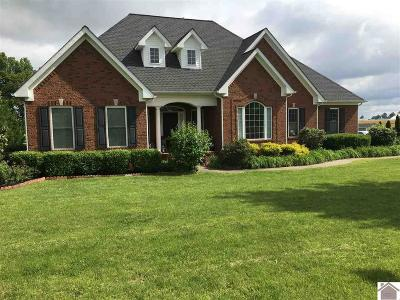 Calloway County Single Family Home For Sale: 2260 Mitchell Dr.