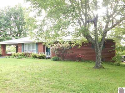 Calloway County, Marshall County Single Family Home For Sale: 1900 Walnut Grove Road