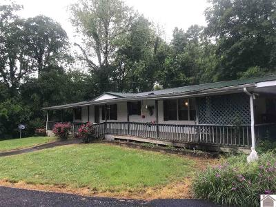 Smithland, Tiline Manufactured Home For Sale: 767 River Road