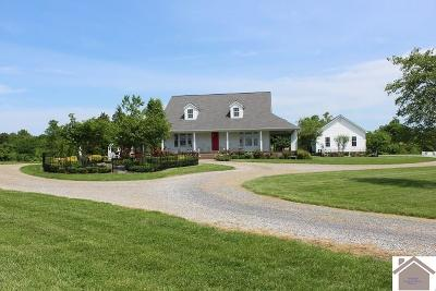 Graves County Single Family Home For Sale: 1500 Hayes School Rd