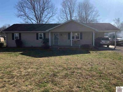 Princeton KY Single Family Home For Sale: $140,000