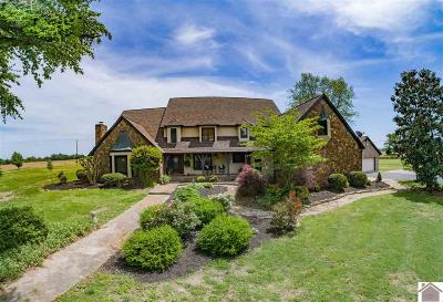 Graves County Single Family Home For Sale: 13428 State Route 564 S