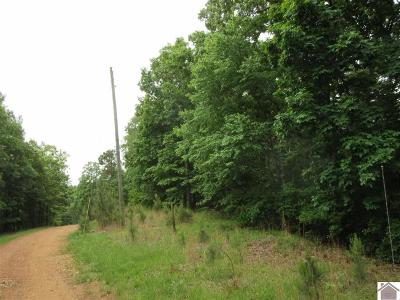 Calloway County Residential Lots & Land For Sale: Ken Lock Dr