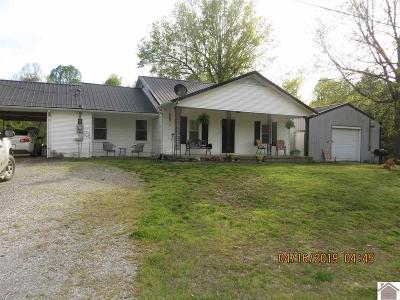 Ballard County Single Family Home For Sale: 1493 Beech Grove Rd.