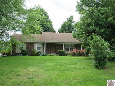 McCracken County Single Family Home Contract Recd - See Rmrks: 125 Skylark