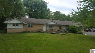 Calloway County Single Family Home Contract Recd - See Rmrks: 2569 State Route 121 South