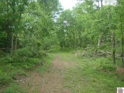Trigg County Farm For Sale: 473 Donaldson Creek Road