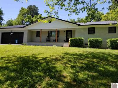 Paducah Single Family Home For Sale: 169 Windmill Drive