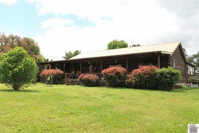 Hopkinsville Single Family Home For Sale: 3525 Brady Ln