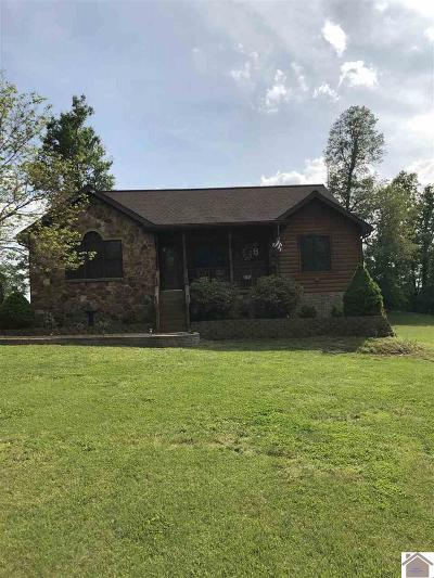 Graves County Single Family Home For Sale: 4299 St Rt 440