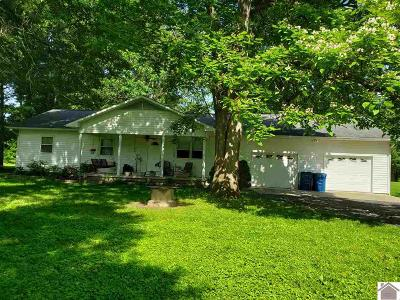 McCracken County Single Family Home For Sale: 241 Jacobs