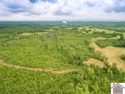 Calloway County Farm For Sale: Billie Branch Rd.