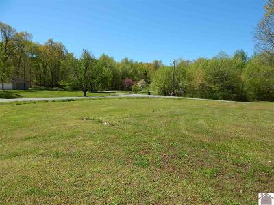 Calvert City KY Residential Lots & Land For Sale: $9,999