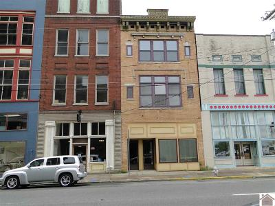 McCracken County Commercial For Sale: 117 North 4th Street