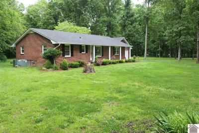 Calloway County Single Family Home For Sale: 154 McDougal