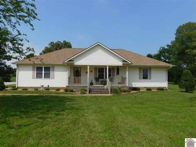 Calloway County Single Family Home For Sale: 50 Timber Ridge Rd