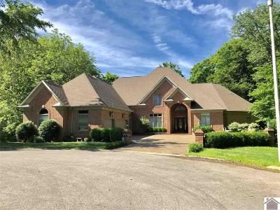 Cadiz KY Single Family Home For Sale: $474,500