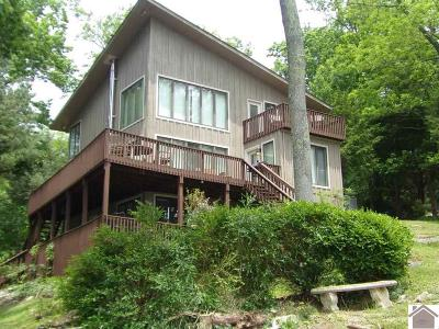 Livingston County, Lyon County, Trigg County Single Family Home For Sale: 718 Riverview Trail
