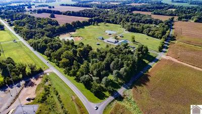 Calloway County Farm For Sale: 112 Murray Paris Road