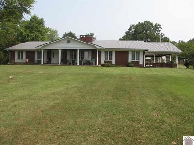 Calloway County, Marshall County Single Family Home For Sale: 91 Duplex Ln