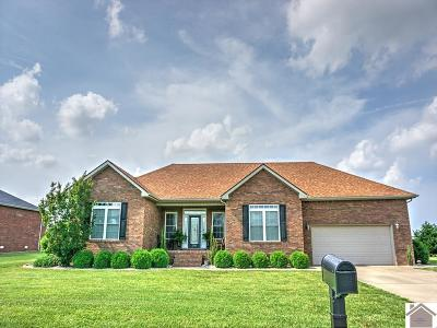 Calloway County Single Family Home For Sale: 2240 Mitchell Dr.