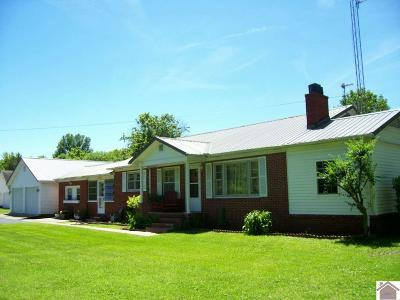 Graves County Single Family Home For Sale: 6219 State Route 97