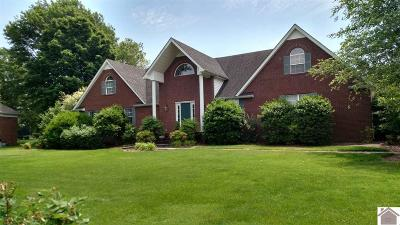 Calloway County Single Family Home For Sale: 1907 Larkspur