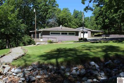 Calloway County Single Family Home For Sale: 505 Little Oaks Ln