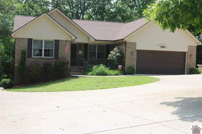 Marshall County Single Family Home For Sale: 674 Serenity Shores Rd