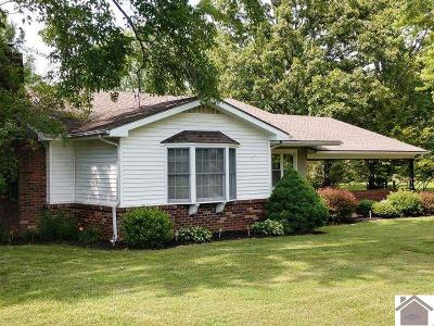 Marshall County Single Family Home For Sale: 1526 Mayfield Hwy