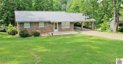 Cadiz, Trigg County, Eddyville, Kuttawa, Grand Rivers Single Family Home For Sale: 521 N Willow Ct