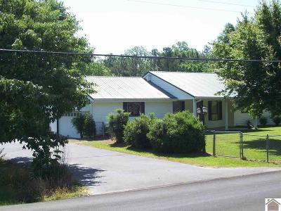 Graves County Single Family Home For Sale: 700 N Sutton Ln