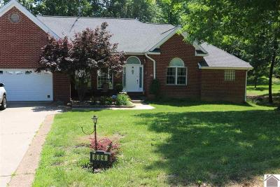Marshall County Single Family Home For Sale: 804 Red River Rd
