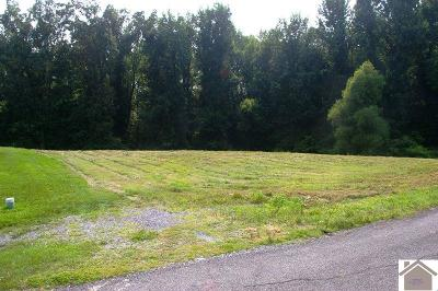 Paducah Residential Lots & Land For Sale: 160 Dove Lane